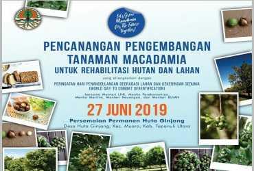 Pencanangan Pengembangan Tanaman Macadamia Untuk Rehabilitasi Hutan dan Lahan