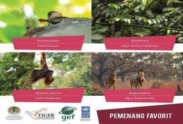 Pemenang Favorit Lomba Foto Satwa Liar Kebanggaan Indonesia