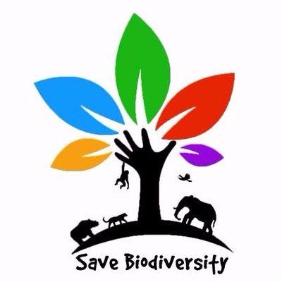 Direktorat Jenderal Konservasi Sumberdaya Alam dan Ekosistem (KSDAE)