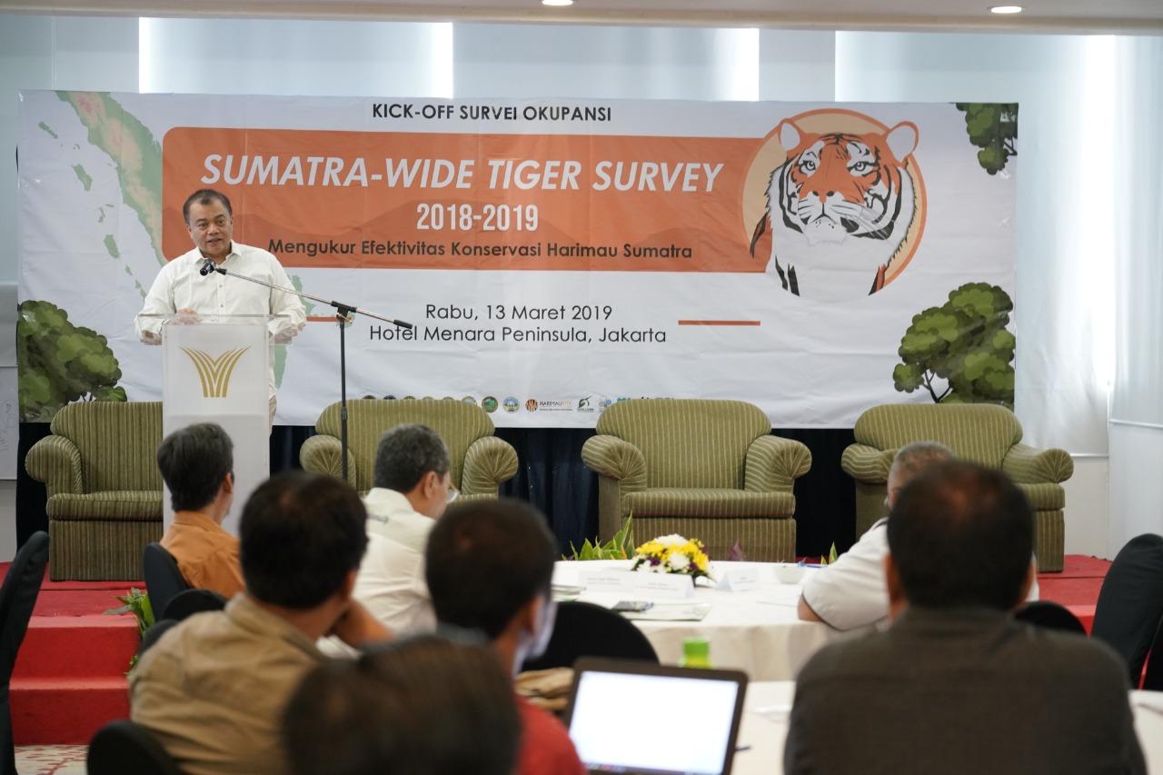 KLHK Luncurkan Program Survei Terbesar di Dunia untuk Harimau Sumatera