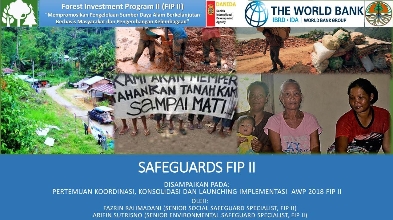SAFEGUARDS FIP II
