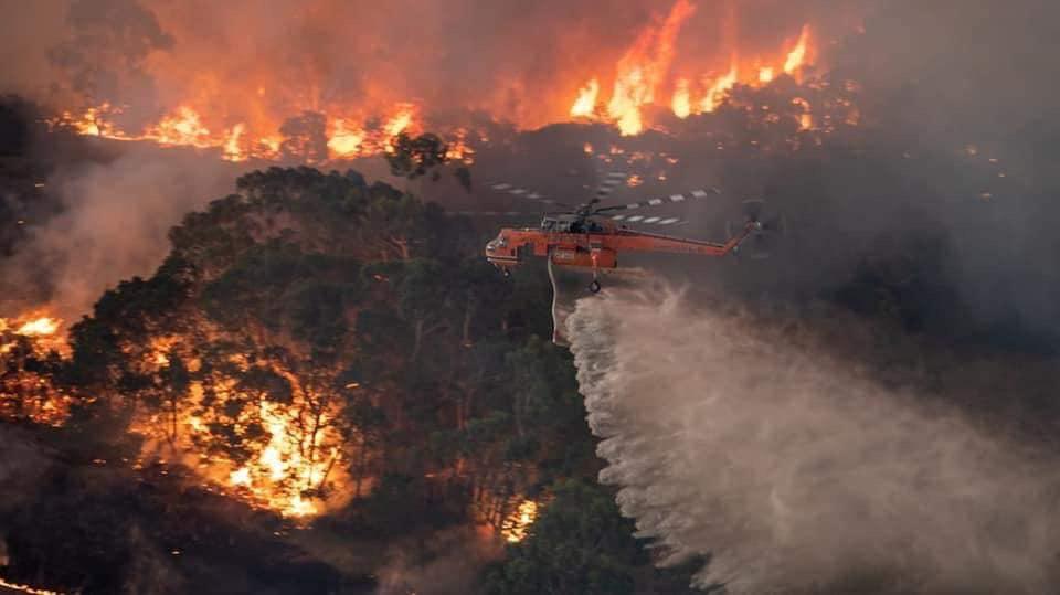 Dampak Kebakaran Hutan di Australia Jadi Pelajaran Masyarakat Indonesia untuk Tidak Membakar Lahan