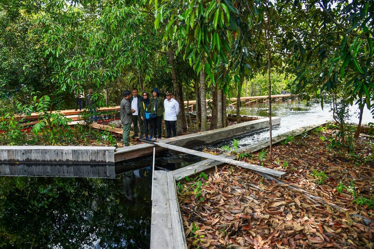 Wakil Menteri LHK Tinjau Dua Taman Nasional di Kalimantan Tengah