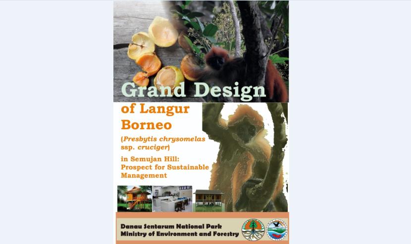Grand Design Langur Borneo