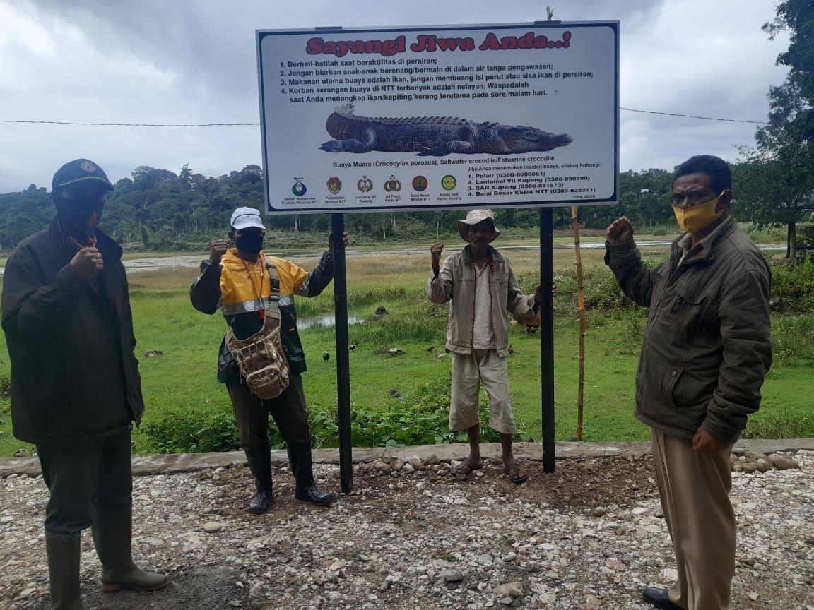 Kemunculan Buaya di Danau Sipil Ditangani Unit Penanganan Satwa BBKSDA NTT