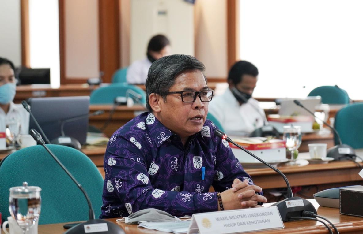Wamen LHK Mendorong Paludikultur di Tengah Pandemi Covid-19 dan Ancaman Karhutla