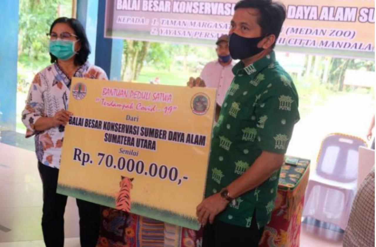 Balai Besar KSDA Sumut Salurkan Bantuan Perawatan Satwa ke Lembaga Konservasi