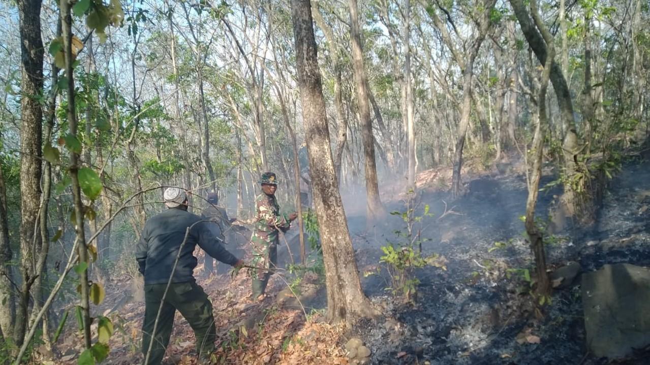 Dalam Tempo Singkat, Brigdalkarhutla Padamkan Titik Api di Jawa Timur dan Bali