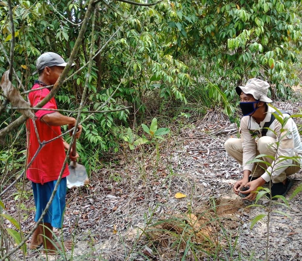 Kolaborasi Menghijaukan Bukit Janda Di Taman Wisata Alam Muka Kuning