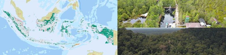 Penetapan Peta Indikatif Penghentian Pemberian Izin Baru Hutan Alam Primer Dan Lahan Gambut (PIPPIB)