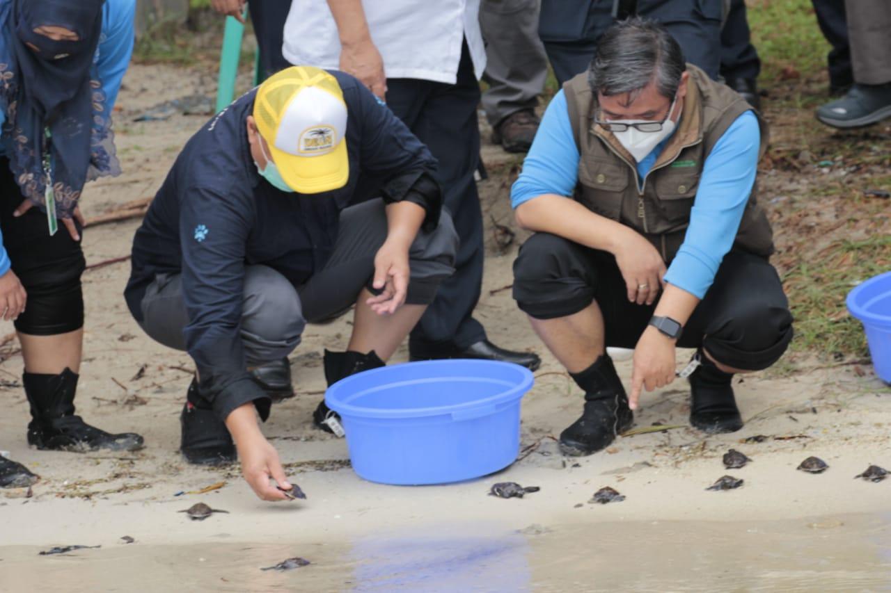 Wamen LHK Memperingati HCPSN 2020 di TN Kepulauan Seribu