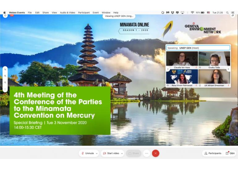 ONLINE BRIEFING ON THE FOURTH MEETING OF THE CONFERENCE OF THE PARTIES TO THE MINAMATA CONVENTION: 365 DAYS TO GO