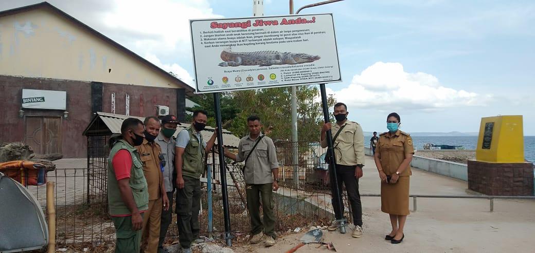 Penanganan Konflik Satwa Liar Buaya Muara di Teluk Kupang