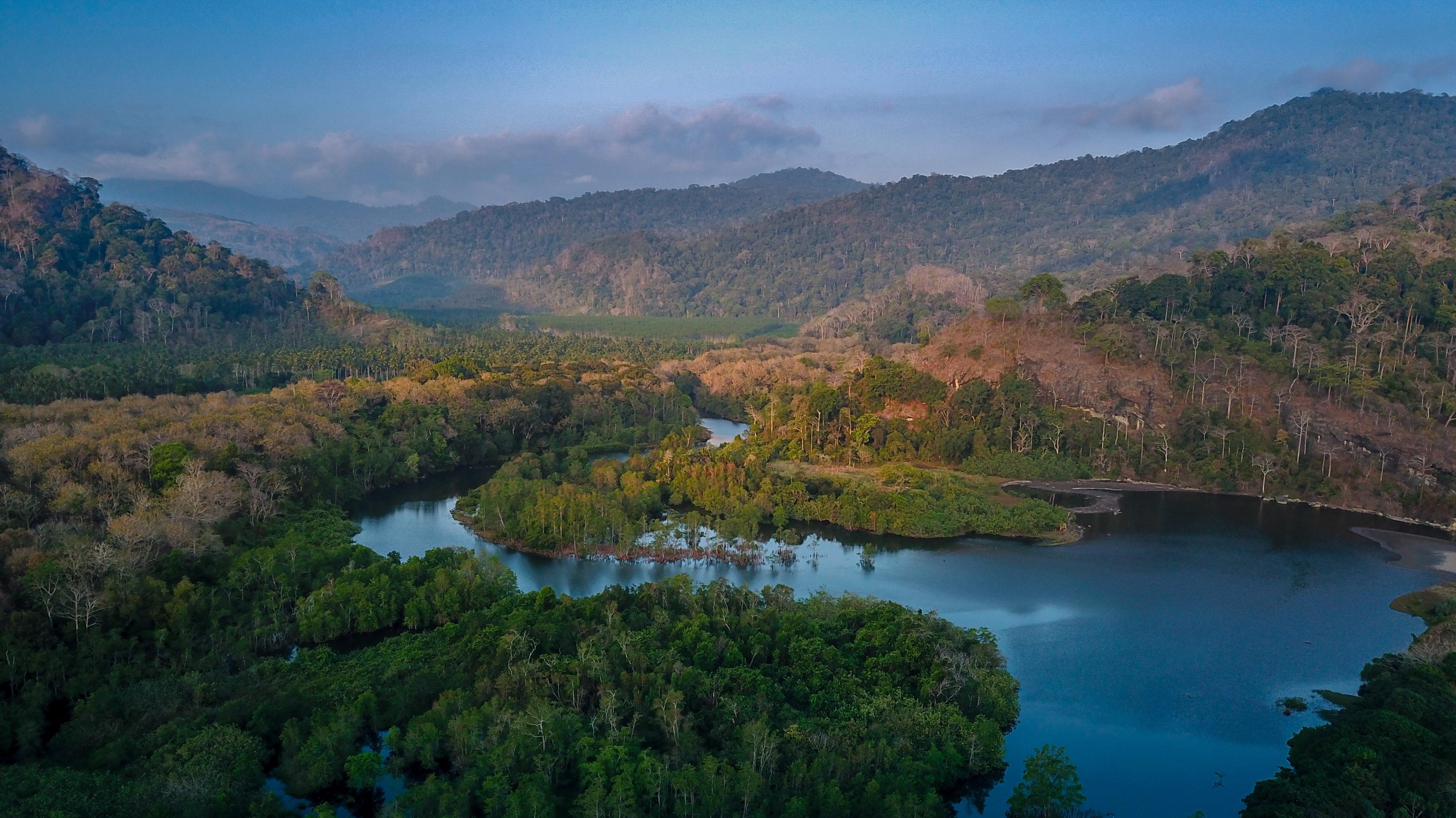 JAWARA Meru Betiri ajak Masyarakat Stop Ilegal Logging di Bandealit