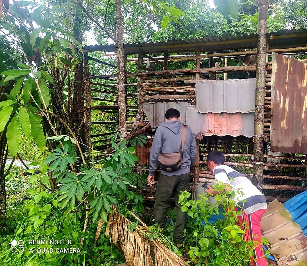 BBKSDA Riau Tindaklanjuti Laporan Konflik Beruang Madu di Desa Balai Raja