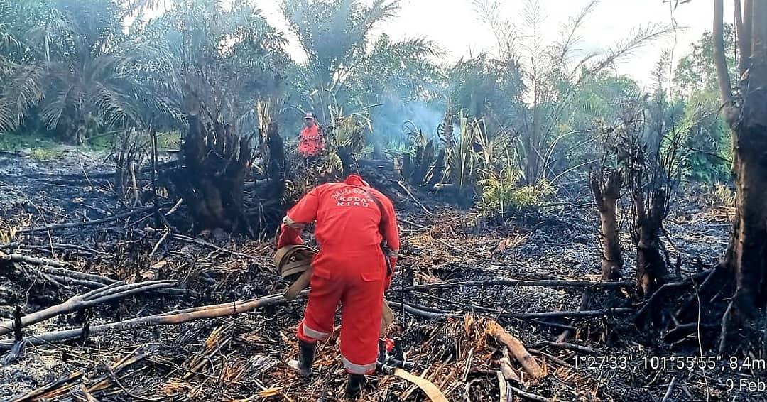 Respon Cepat Tim Resort Bukit Batu Padamkan Api Di Wilayah Kawasan SM Bukit Batu