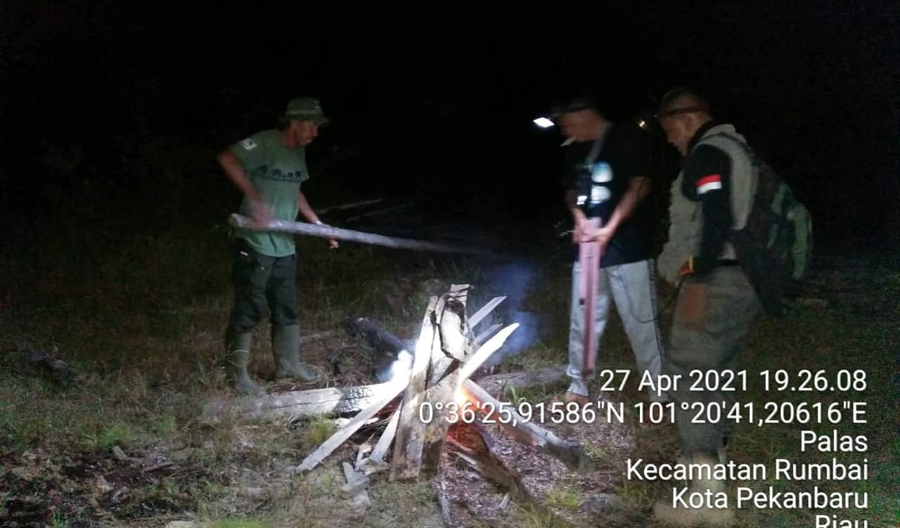 Konflik Gajah Dengan Warga Tak Kunjung Usai, Tim Rescue Balai Besar KSDA Riau Lakukan Mitigasi di Kelurahan Agrowisata