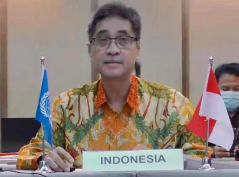 Jalan Hutan Tropis Indonesia Menuju Harapan Dunia
