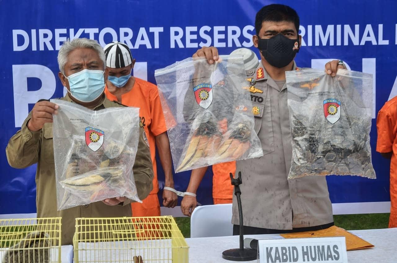 Polda Riau Beberkan Hasil Penangkapan Penjual Satwa Dilindungi