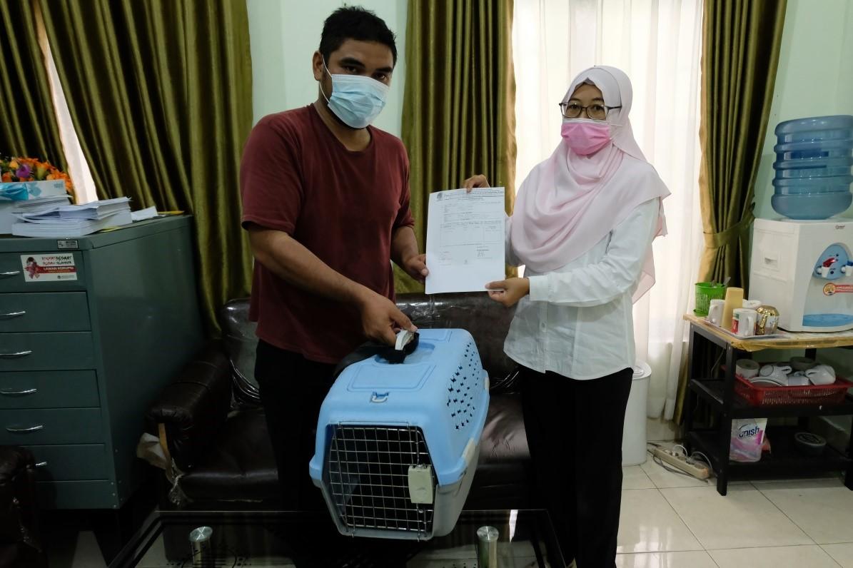 Warga Percut Sei Tuan Serahkan Kucing Hutan Ke Balai Besar KSDA Sumut