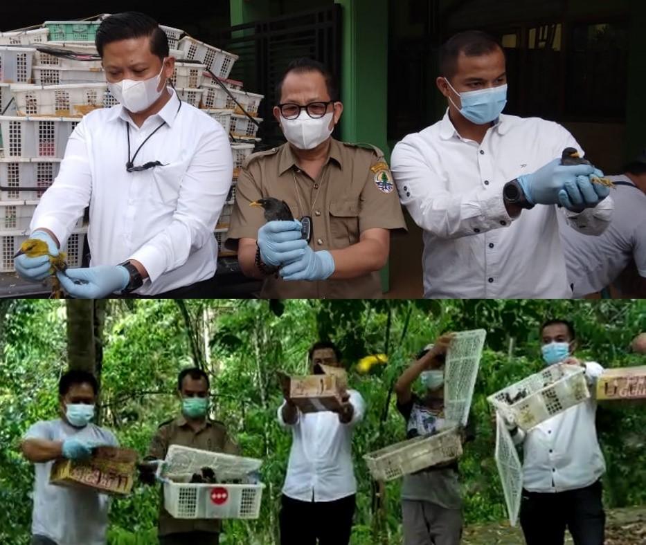 Ribuan Ekor Burung Hasil Penertiban Peredaran TSL Dilepasliarkan