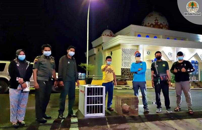 Satwa Liar Dilindungi di Evakuasi untuk Dilepasliarkan