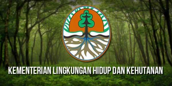 Penyampaian Dokumen Informasi Kerja Pengelolaan Lingkungan Hidup Daerah Tahun 2018