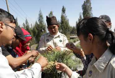 Melihat Budi Daya 'Bunga Abadi' di Desa Edelweiss di Kaki