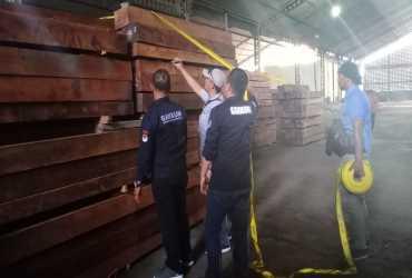 KLHK Tindak Kayu Merbau Ilegal Asal Maluku Tengah