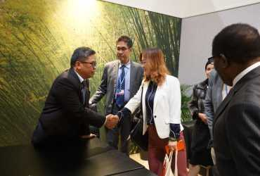 Indonesia Siap Kembangkan Komoditas Rotan dan Bambu