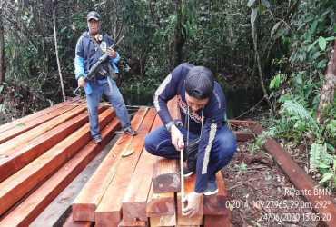 Gakkum LHK Amankan 18 Pelaku Pembalakan Liar di Mempawah Kalimantan Barat