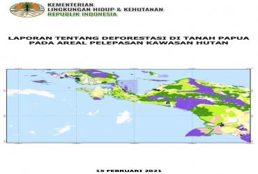Laporan Tentang Deforestasi di Tanah Papua Pada Areal Pelepasan Kawasan Hutan