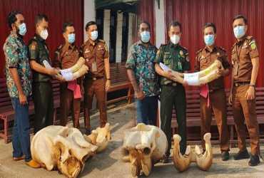 Vonis Penjara Untuk Dua Pembunuh Gajah di Kelayang