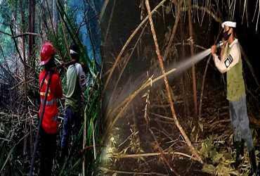 Pemadaman Kebakaran Hutan di SM Bukit Batu