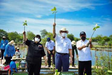 Kick Off Penanaman Mangrove Tahun 2021
