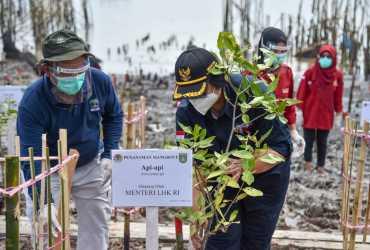 Menteri LHK Tanam Mangrove di Dumai, PEN Mangrove 2021 di Riau Dimulai