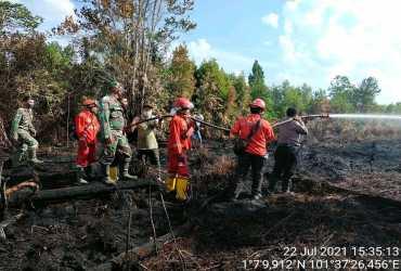 Quick Respon, BBKSDA Riau dan Tim Gabungan Padamkan Api di