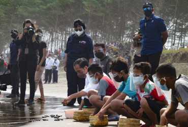 Presiden Joko Widodo Lepasliarkan 1.500 Ekor Tukik di Pantai Kemiren
